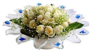 Bursa çiçekçiler orhaneli çiçekçiler  11 adet Beyaz güller özel cam tanzim