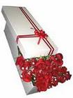 Çiçekçi Bursa sitesi inegöl çiçek mağazası , çiçekçi adresleri  11 adet 1.kalite magnum güller
