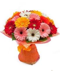 Renkli gerbera buketi  Çiçekçi Bursa sitesi nilüfer çiçek siparişi vermek