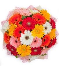15 adet renkli gerbera buketi  Bursa çiçekçi karacabey 14 şubat sevgililer günü çiçek