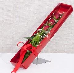 Kutu içerisinde 3 adet kırmızı gül  Çiçekçi Bursa sitesi orhangazi çiçek satışı