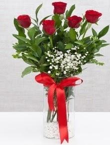cam vazo içerisinde 5 adet kırmızı gül  Bursa çiçek ucuz çiçek gönder