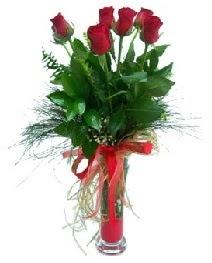 vazo içerisinde 5 kırmızı gül  Bursa çiçek kestel uluslararası çiçek gönderme