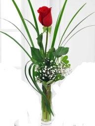 Cam içerisinde 1 kırmızı gül  Çiçekçi Bursa sitesi nilüfer anneler günü çiçek yolla