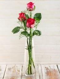 Cam içerisinde 3 kırmızı gül  Bursa çiçekçi inegöl kaliteli taze ve ucuz çiçekler