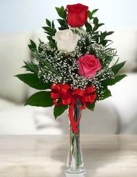Camda 2 kırmızı 1 beyaz gül  Bursa çiçek yolla osmangazi online çiçekçi , çiçek siparişi