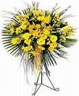 Bursa çiçekçi karacabey 14 şubat sevgililer günü çiçek  Sari kazablanka Ferforje