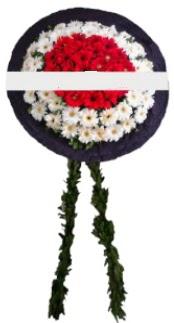 mozele çiçeği  Bursadaki çiçek cicek , cicekci