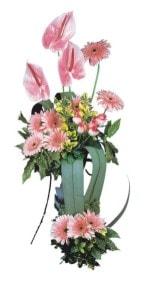 Bursa çiçek kestel uluslararası çiçek gönderme  Pembe Antoryum Harikalar Rüyasi