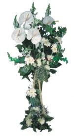 Bursa çiçek mustafa kemal paşa çiçek siparişi sitesi  antoryumlarin büyüsü özel