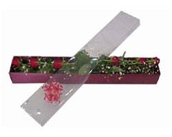 Çiçekçi Bursa sitesi nilüfer çiçek siparişi vermek   6 adet kirmizi gül kutu içinde