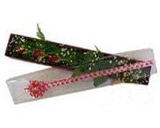Bursa çiçek satışı Bursa çiçek yolla   3 adet gül.kutu yaldizlidir.