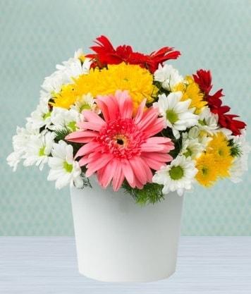 Seramik Vazoda Gelbera ve Papatya  Bursa çiçek iznik çiçek online çiçek siparişi
