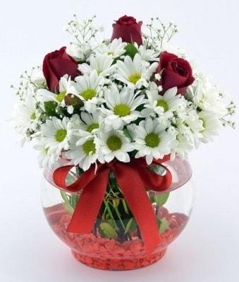 Fanusta 3 Gül ve Papatya  Bursa çiçek siparişi
