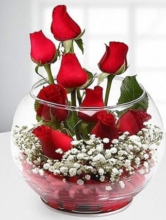Kırmızı Mutluluk fanusta 9 kırmızı gül  Online Bursa çiçekçi