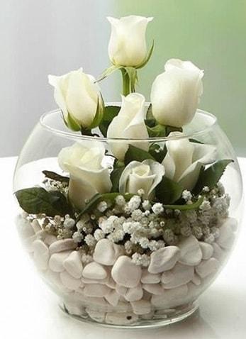 Beyaz Mutluluk 9 beyaz gül fanusta  Online Bursa çiçekçi
