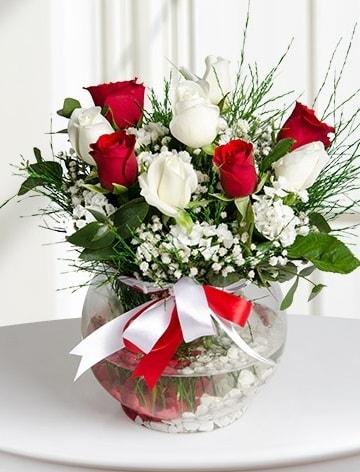 Aşk Küresi  5 beyaz 5 kırmızı gül fanusta  Bursa çiçek siparişi