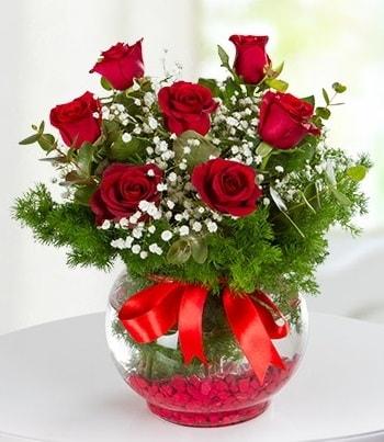 fanus Vazoda 7 Gül  Bursa çiçek büyük orhan yurtiçi ve yurtdışı çiçek siparişi