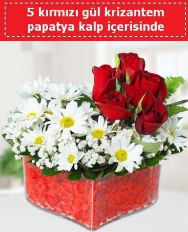 mika kalp içerisinde 5 kırmızı gül papatya  Bursa çiçek iznik çiçek online çiçek siparişi