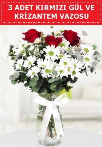 3 kırmızı gül ve camda krizantem çiçekleri  Bursa çiçek iznik çiçek online çiçek siparişi