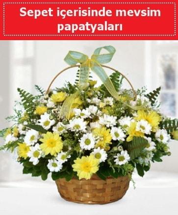 Sepet içerisinde mevsim papatyaları  Bursa çiçek yolla osmangazi online çiçekçi , çiçek siparişi