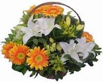 Bursa çiçek siparişi inegöl çiçek servisi , çiçekçi adresleri  sepet modeli Gerbera kazablanka sepet